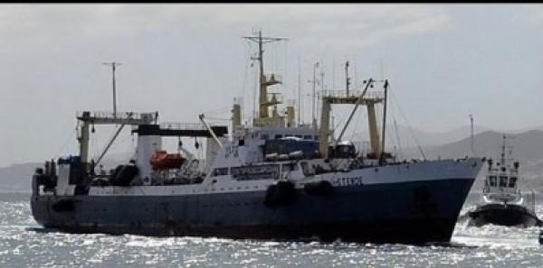 القوات اليمنية توقف شحنة أسلحة على متن سفينة إماراتية في جزيرة سقطرى