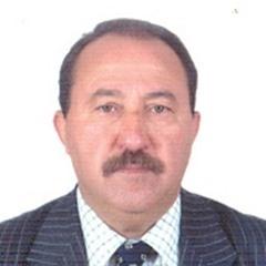 الحراك العربي في نسخته الثانية.. أية آفاق؟
